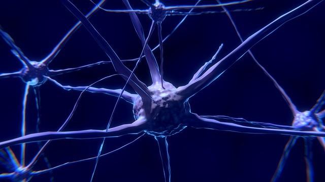 Réseaux de neurones connectés entre eux représentant la mémoire