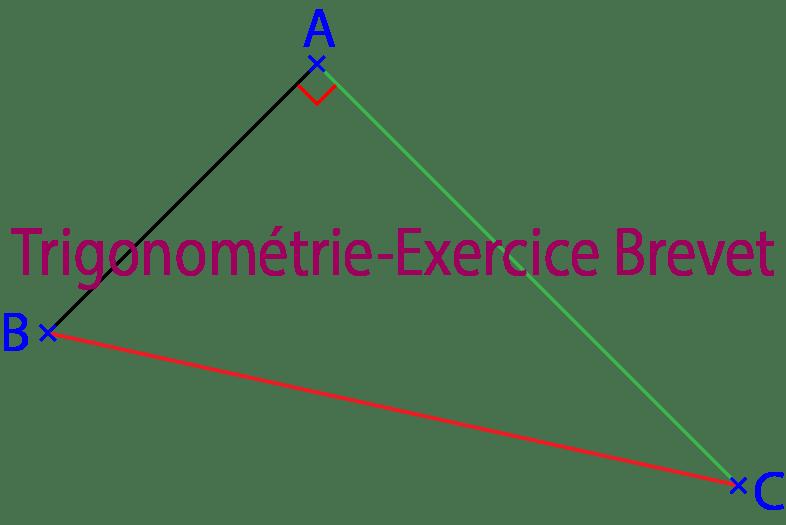 Trigonometrie Sur Le Triangle Rectangle Exercices Corriges 3eme